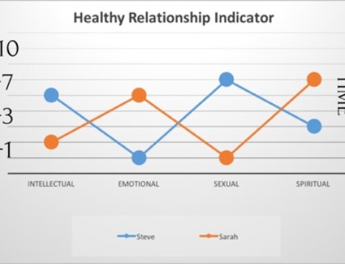 The Healthy Relationship Indicator