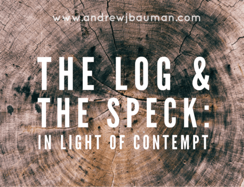 The Log & The Speck: In Light of Contempt