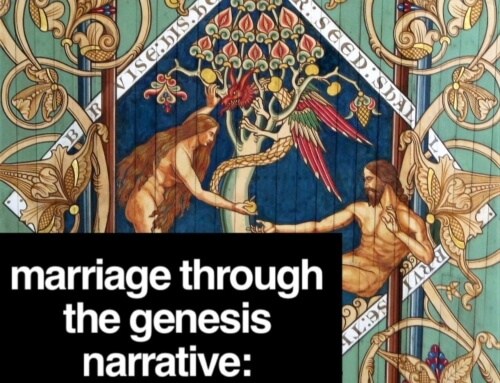Marriage through the Genesis Narrative: Creating Equality